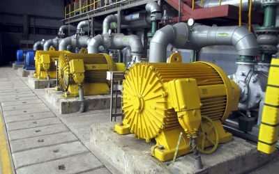 Reliability and Quality in Your Pumps with Wild Rows
